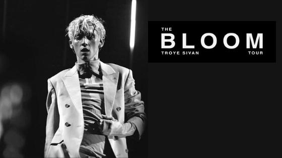 Troye Sivan banner