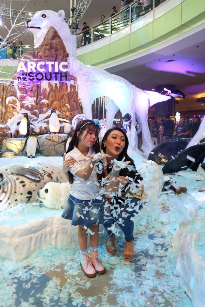 SM Supermalls Arctic In The South